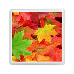 Autumn Leaves 1 Memory Card Reader (square)