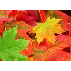 Autumn Leaves 1 Birthday Cake 3d Greeting Card (7x5)