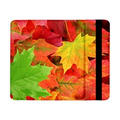 Autumn Leaves 1 Samsung Galaxy Tab Pro 8 4  Flip Case