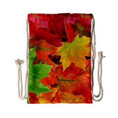 AUTUMN LEAVES 1 Drawstring Bag (Small)