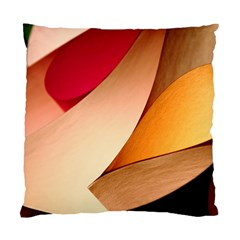 PRETTY ABSTRACT ART Standard Cushion Case (One Side)