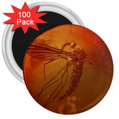 MOSQUITO IN AMBER 3  Magnets (100 pack)