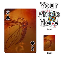 Mosquito In Amber Playing Cards 54 Designs