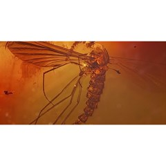 Mosquito In Amber You Are Invited 3d Greeting Card (8x4)