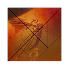 Mosquito In Amber Acrylic Tangram Puzzle (6  X 6 )