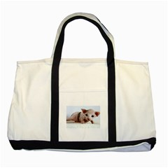 Sphynx Kitten Two Tone Tote Bag