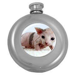 Sphynx Kitten Round Hip Flask (5 oz)
