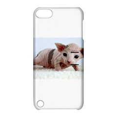 Sphynx Kitten Apple iPod Touch 5 Hardshell Case with Stand