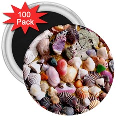 COLORFUL SEA SHELLS 3  Magnets (100 pack)