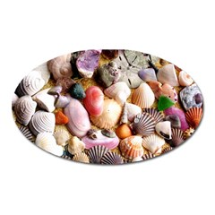 COLORFUL SEA SHELLS Oval Magnet