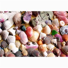Colorful Sea Shells Collage 12  X 18