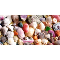 Colorful Sea Shells You Are Invited 3d Greeting Card (8x4)