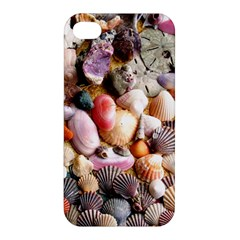 COLORFUL SEA SHELLS Apple iPhone 4/4S Hardshell Case