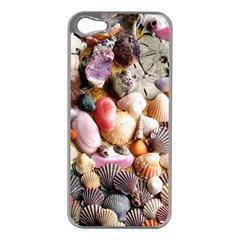 COLORFUL SEA SHELLS Apple iPhone 5 Case (Silver)
