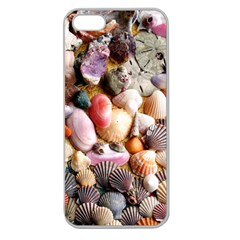 COLORFUL SEA SHELLS Apple Seamless iPhone 5 Case (Clear)