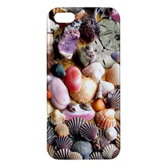 COLORFUL SEA SHELLS iPhone 5S Premium Hardshell Case