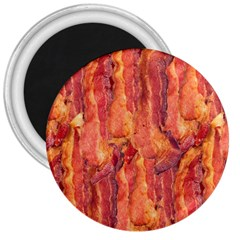 BACON 3  Magnets