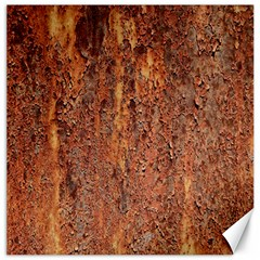 FLAKY RUSTING METAL Canvas 12  x 12