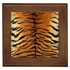 TIGER FUR Framed Tiles