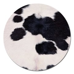 SPOTTED COW HIDE Magnet 5  (Round)