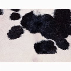 SPOTTED COW HIDE Canvas 12  x 16