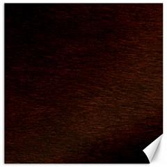 REDDISH BROWN FUR Canvas 20  x 20