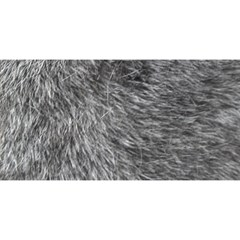 Grey Wolf Fur You Are Invited 3d Greeting Card (8x4)