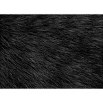 BLACK CAT FUR Heart Bottom 3D Greeting Card (7x5)  Front