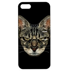 Angry Cyborg Cat Apple iPhone 5 Hardshell Case with Stand