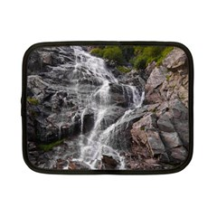 MOUNTAIN WATERFALL Netbook Case (Small)