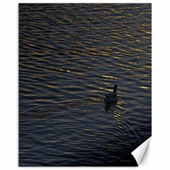 Lonely Duck Swimming At Lake At Sunset Time Canvas 11  x 14