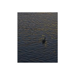Lonely Duck Swimming At Lake At Sunset Time Shower Curtain 48  X 72  (small)