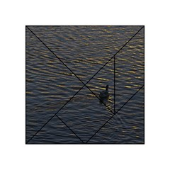 Lonely Duck Swimming At Lake At Sunset Time Acrylic Tangram Puzzle (4  x 4 )