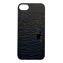 Lonely Duck Swimming At Lake At Sunset Time Apple iPhone 5S Hardshell Case