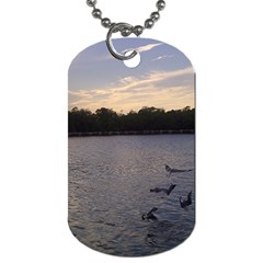 Intercoastal Seagulls 3 Dog Tag (Two Sides)