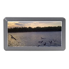 Intercoastal Seagulls 3 Memory Card Reader (Mini)