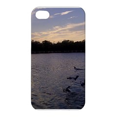Intercoastal Seagulls 3 Apple iPhone 4/4S Hardshell Case