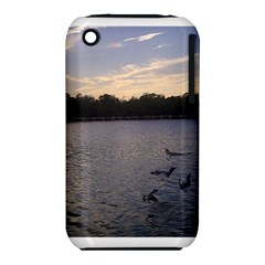 Intercoastal Seagulls 3 Apple iPhone 3G/3GS Hardshell Case (PC+Silicone)