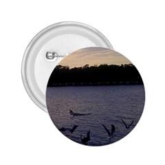 Intercoastal Seagulls 3 2.25  Buttons