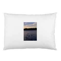 Intercoastal Seagulls 3 Pillow Cases (Two Sides)