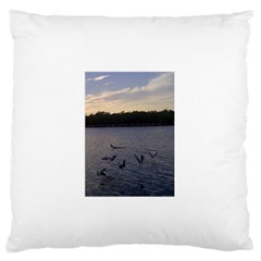 Intercoastal Seagulls 3 Standard Flano Cushion Cases (Two Sides)