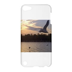 Intercoastal Seagulls 4 Apple iPod Touch 5 Hardshell Case