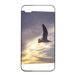 Seagull 1 Apple iPhone 4/4s Seamless Case (Black)