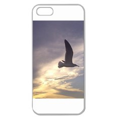 Seagull 1 Apple Seamless iPhone 5 Case (Clear)