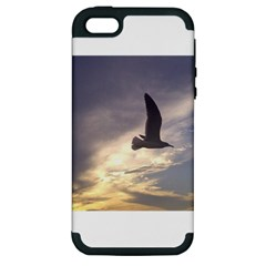 Fly Seagull Apple iPhone 5 Hardshell Case (PC+Silicone)