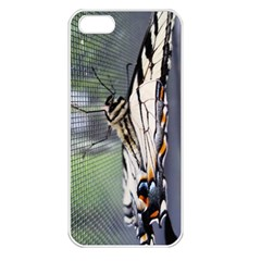 Butterfly 1 Apple iPhone 5 Seamless Case (White)