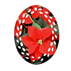 POINSETTIA Ornament (Oval Filigree)