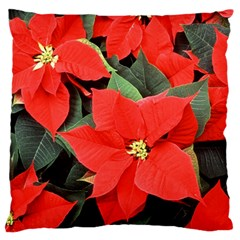 POINSETTIA Standard Flano Cushion Cases (Two Sides)