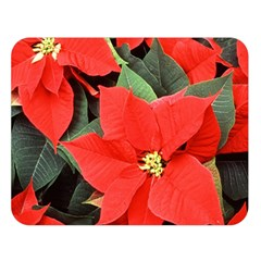 POINSETTIA Double Sided Flano Blanket (Large)