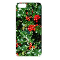 HOLLY 2 Apple iPhone 5 Seamless Case (White)
